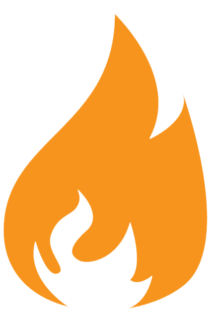 Information Taxonomy Torch Icon