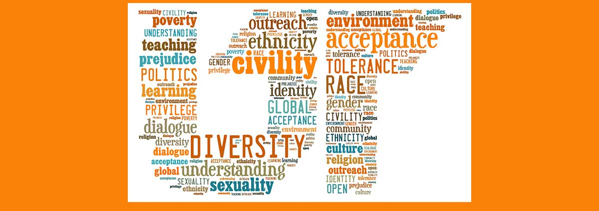 Information Sciences Diversity and Inclusion